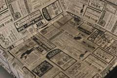 ניקוי-ספות-מרעלים